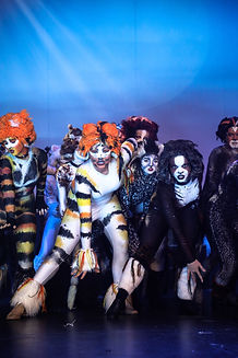 May2019_Regals_Cats_Company-9.jpg