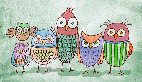 Owl Line Up