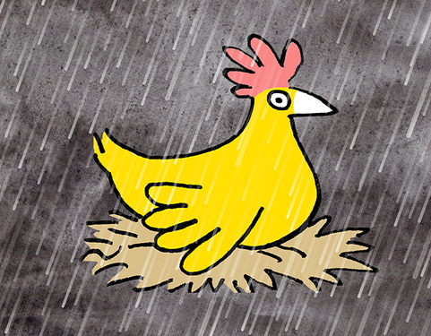 Chicken in the Rain