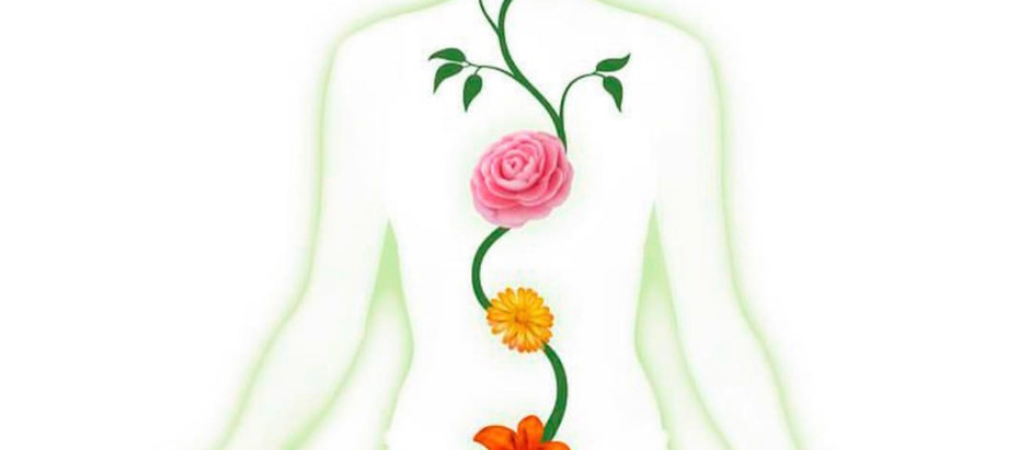 What are chakras and why are they important?