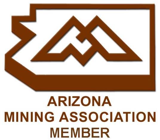 AMA Member Logo (3)