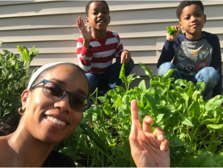A Look Back at Our 2019 Garden