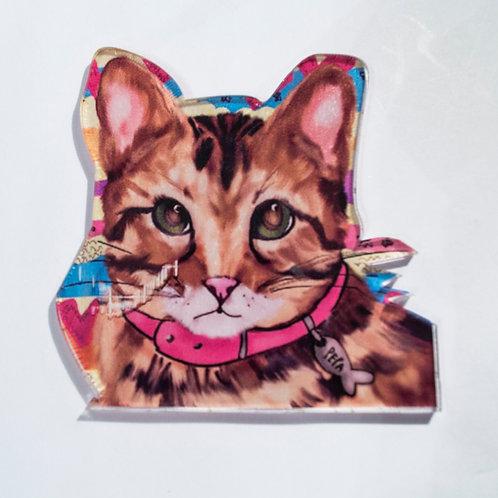 Pin The cat