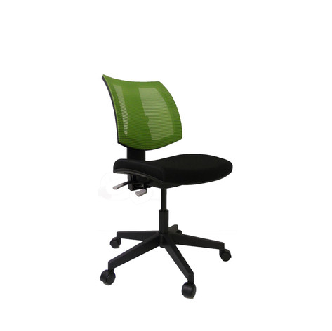 Ergoright Office Chair