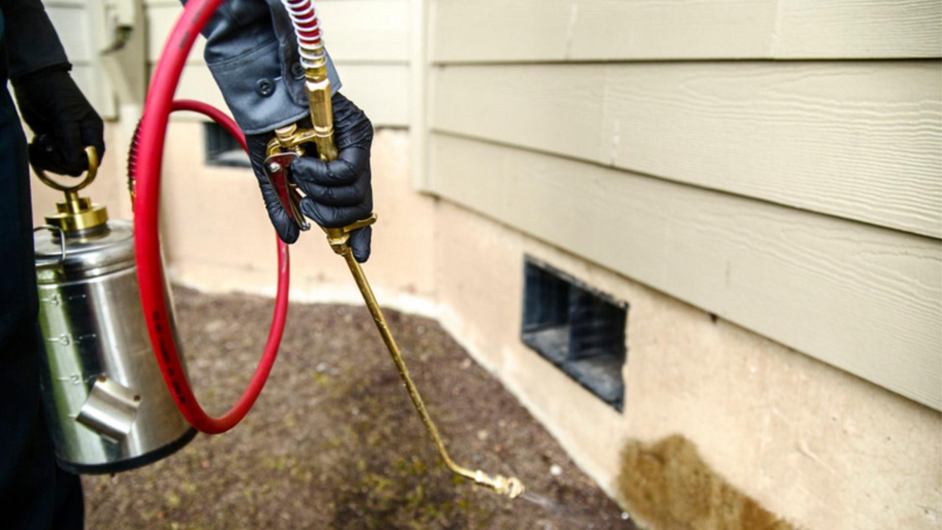 home-pest-control.jpg