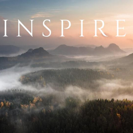 Inspire Wealth Partners' First Full Year