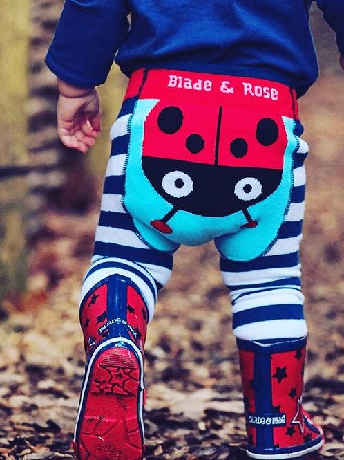 Buwch goch gota / ladybird 🐞
