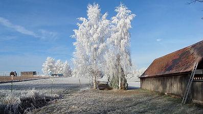 HP Anlage Winter.jpg