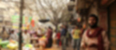 IMG_3445_cropped.jpg
