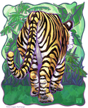 Animal Parade Tiger Butt