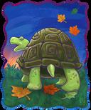 Animal Parade Tortoise Behind