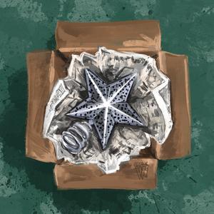 The Christmas Star by Traci Van Wagoner