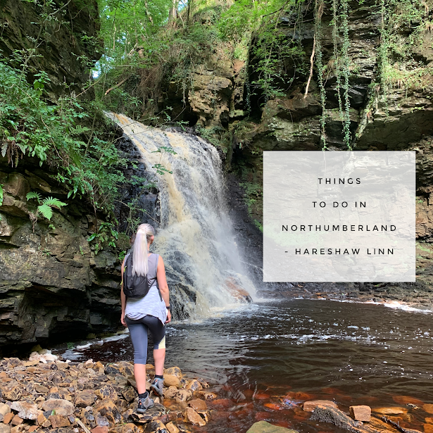 Things to do in Northumberland – Hareshaw Linn