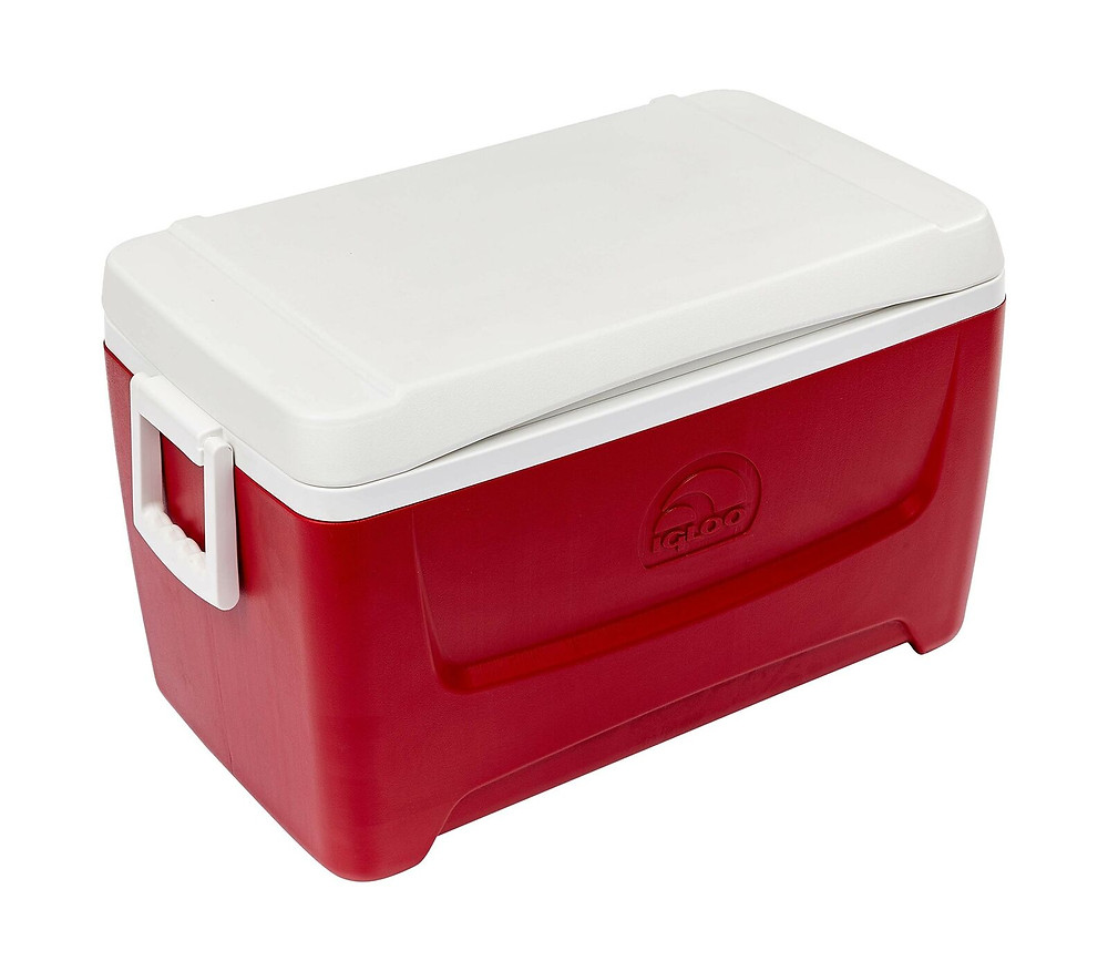 10 Best Cool Boxes For Festivals - igloo cool box