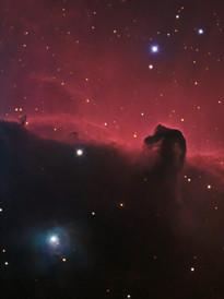 The Horse Head Nebula