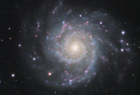 Phantom Galaxy - M74