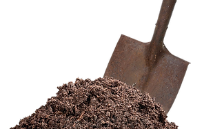 shovel in dirt.png