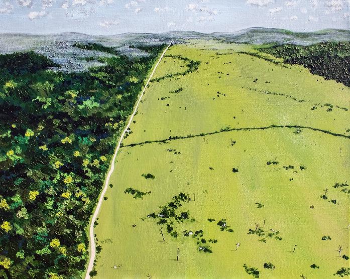 deforestion.JPG