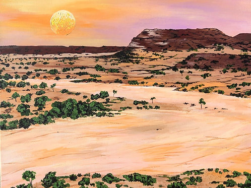 The Bigger Picture: Desertification