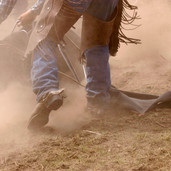 Horse Riding & Rodeo