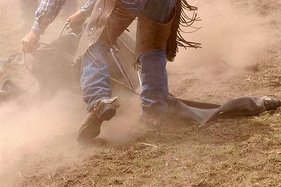 Cowboy bei der Arbeit