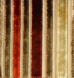 Design - PLUME STRIPE-10,18325062005