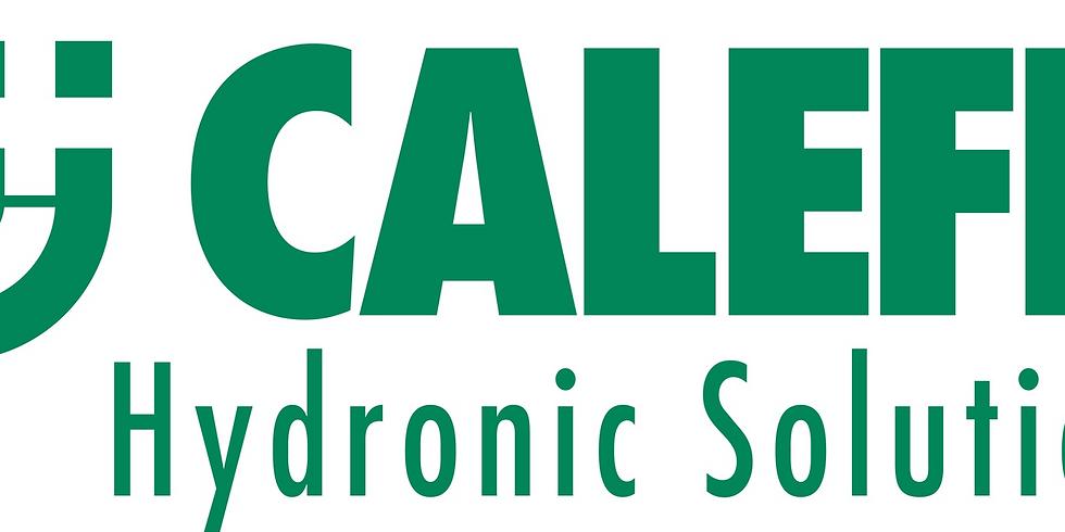 Caleffi Magnetic Separation Training