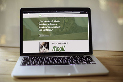 Neue-Website-Mockup.jpg