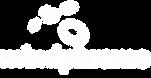 mindphrame logo.png