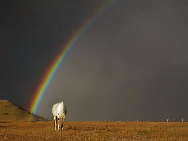 Dili rainbow 2.JPG