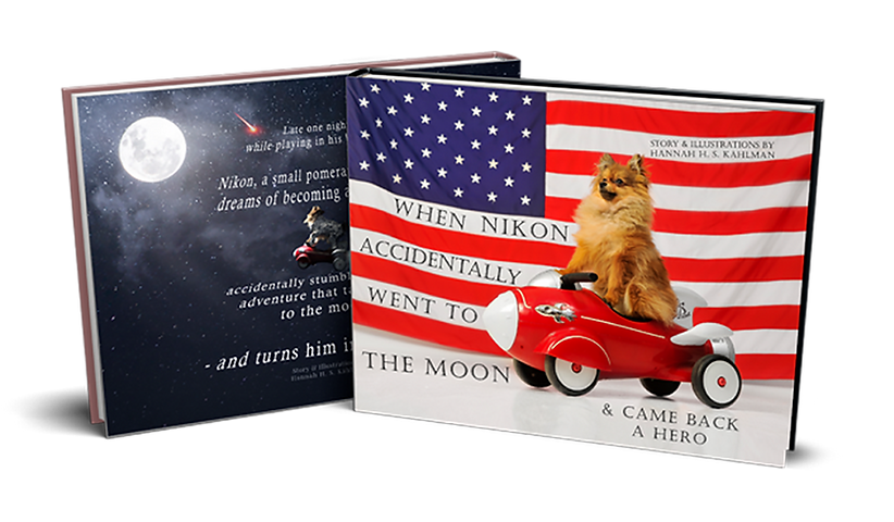 Dog by American flag for most personaliz