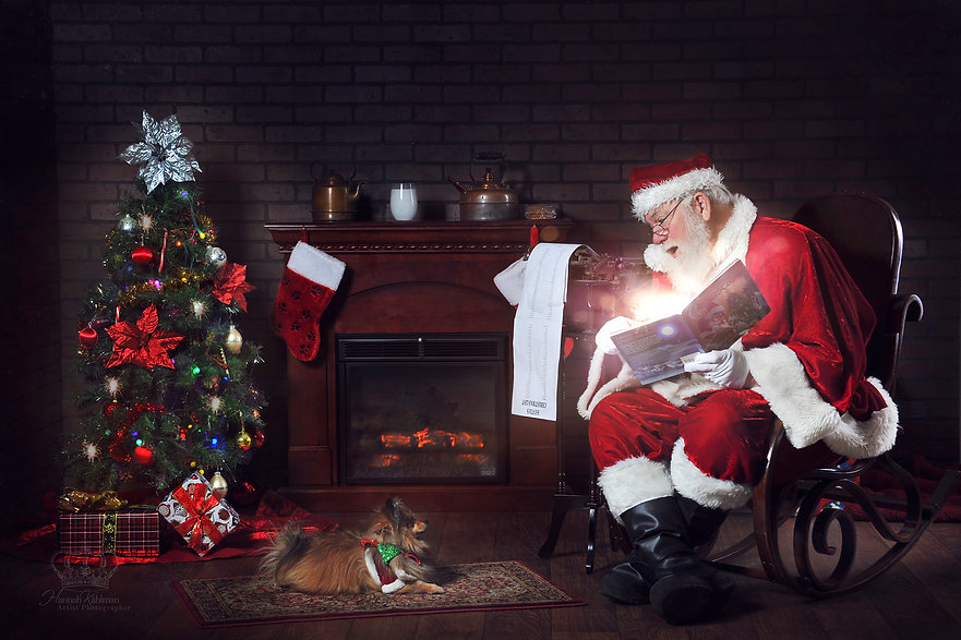 Pomeranian_dog_meets_Santa_Christmas_pet