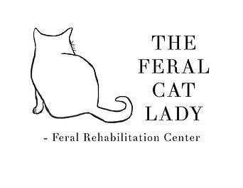 Feral_Cat_Lady_-_Feral_Rehabilitation_Ce