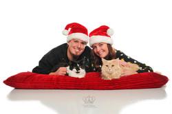 Fun_creative_Christmas_photos_with_cats_