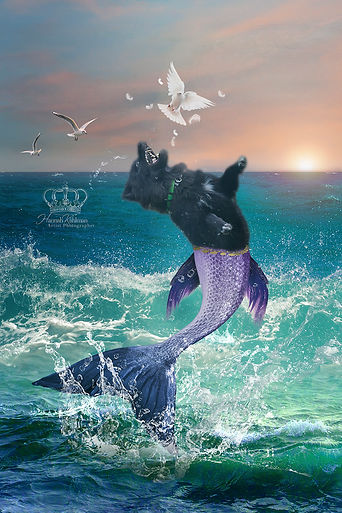 Fantasy_composite_photo_of_dog_as_mermai