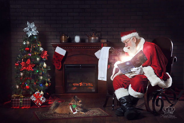 Pomeranian_dog_and_Santa_for_personalize
