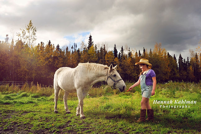 Outdoor photo girl with horse Wasilla Al