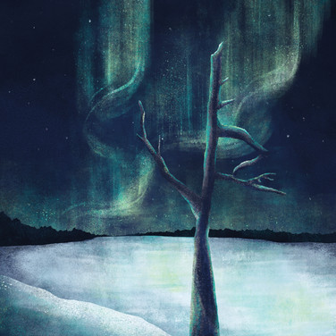Old tree by the frozen lake