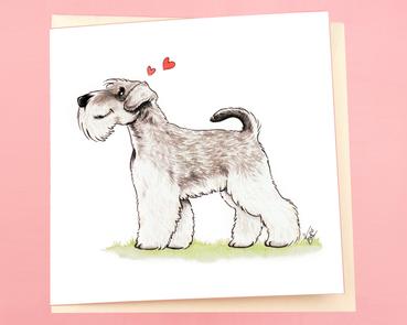 Dog breeds: Schnauzer