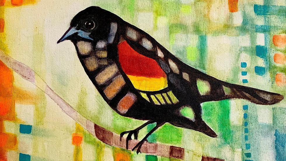 2020 Red-Winged Black Bird