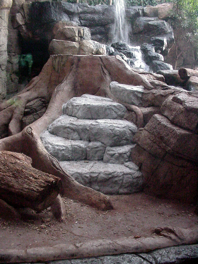 Stone & wood steps, tiger habitat