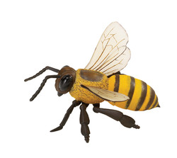 Honey bee toy