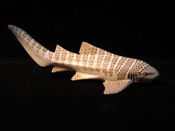 Zebra shark toy