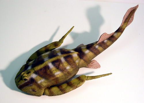 Bothriolepis reconstruction