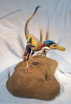 Velociraptor reconstruction