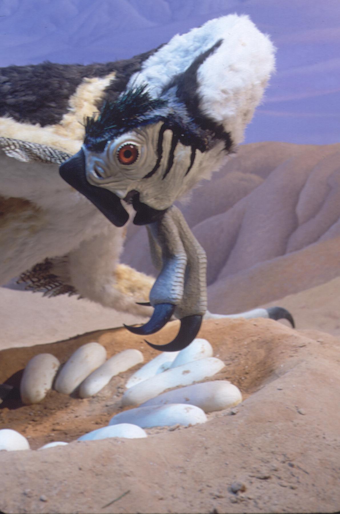 Nesting Oviraptor detail