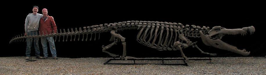 Deinosuchus, Crocodile, fossil, dinosaur, paleo-art, sculpture