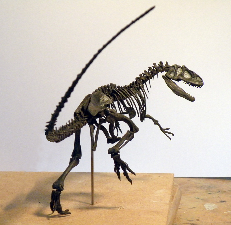 Allosaurus mount, 1/12 scale