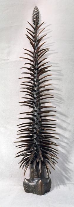 Pleuromeia, Smithsonian bronze
