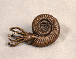 Xenodiscus, Smithsonian bronze
